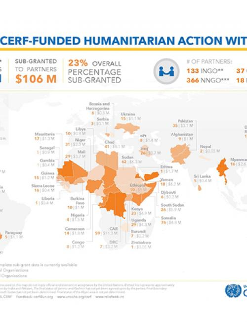 Delivering CERF funded humanitarian action with partners