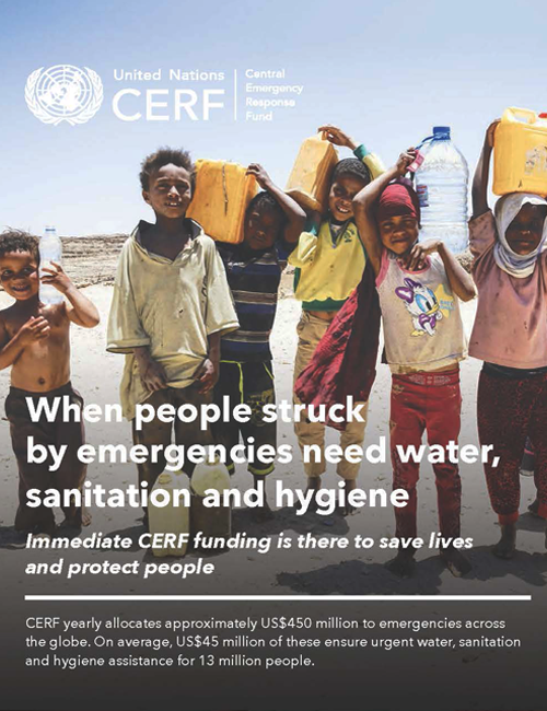 CERF thematic brochure on wash