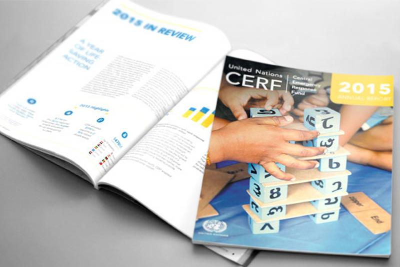 CERF releases its 2015 annual report
